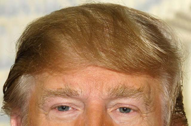 ドナルド・トランプ 髪型